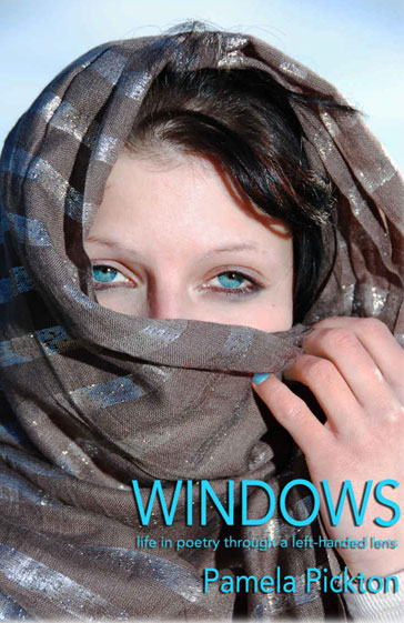 Windows book cover